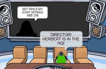 directorr